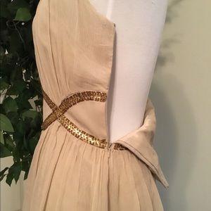 Maggy London Dresses - Maggy London Silk Nude & Sequins Evening Dress 8